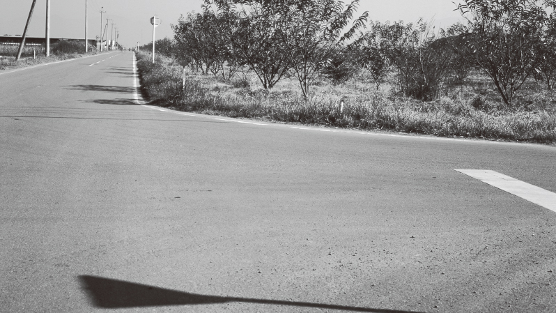 ナタを埋めて隠したとされる旧日本軍の滑走路付近
